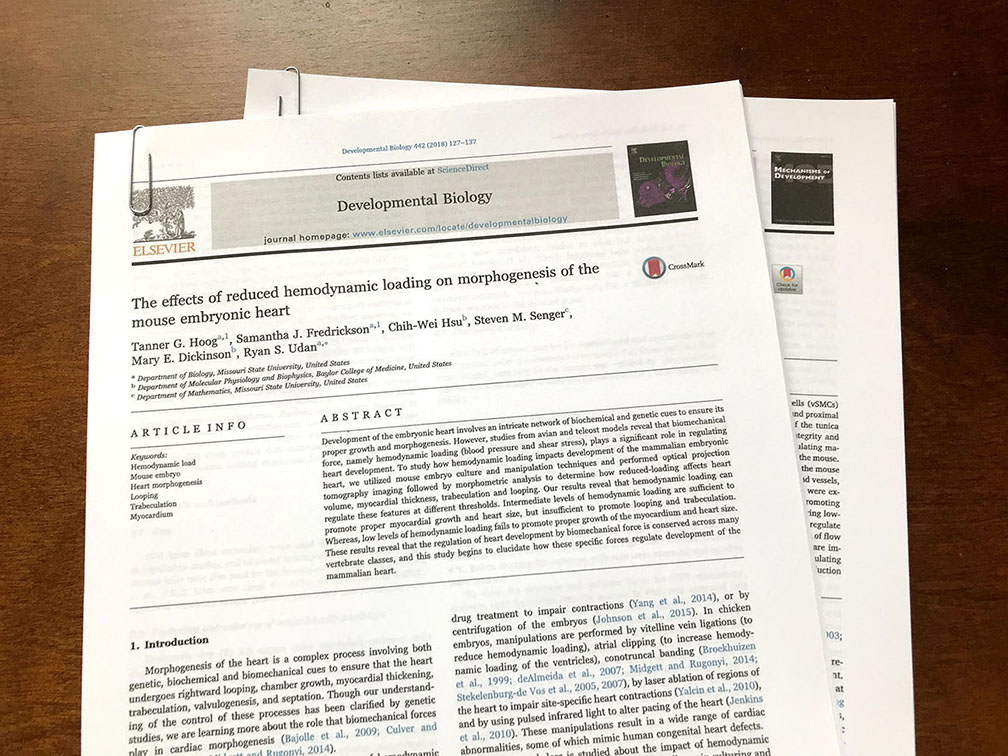 Image showing research articles